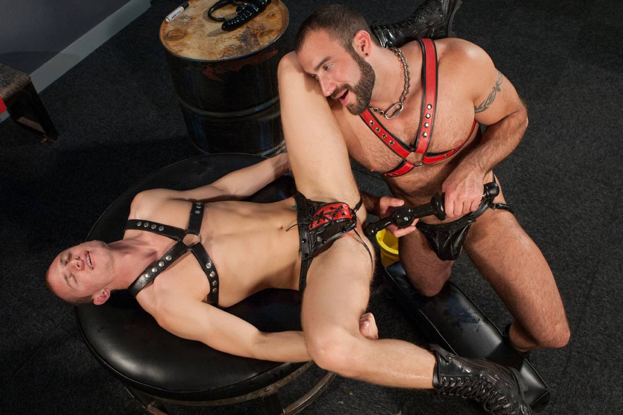 gay sex doggy style